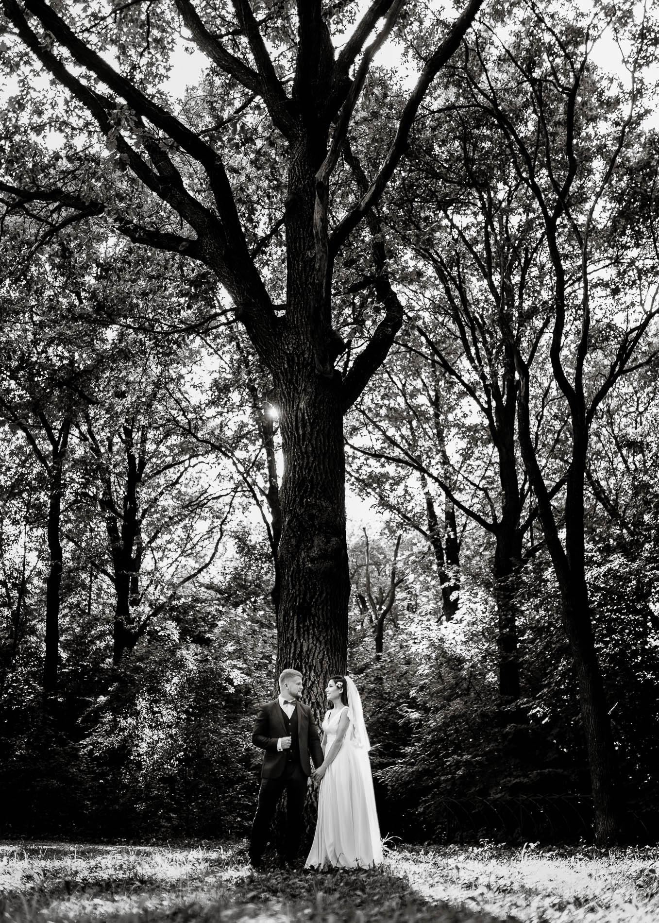 Свадебный фотограф Кузьмин Павел MoonRay